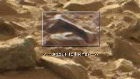 Alien Animal Bone & Corpse: Mars Curiosity Anomalies